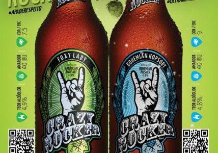 A Crazy Rocker de Leonardo Bregula
